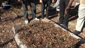 UNIVERSITY OF EARTH:  DAY 2 – PERMACULTURE 3 – SOIL FOR LIFE PART TWO