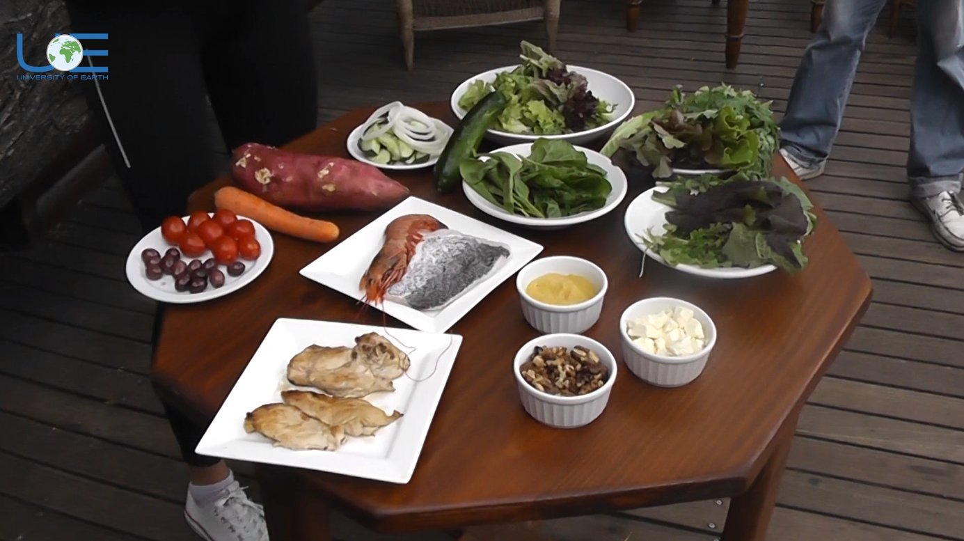 UNIVERSITY OF EARTH: Healthy Food - Fish